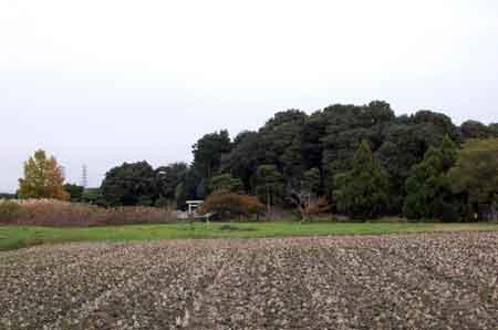 151129飯豊天皇陵遠望