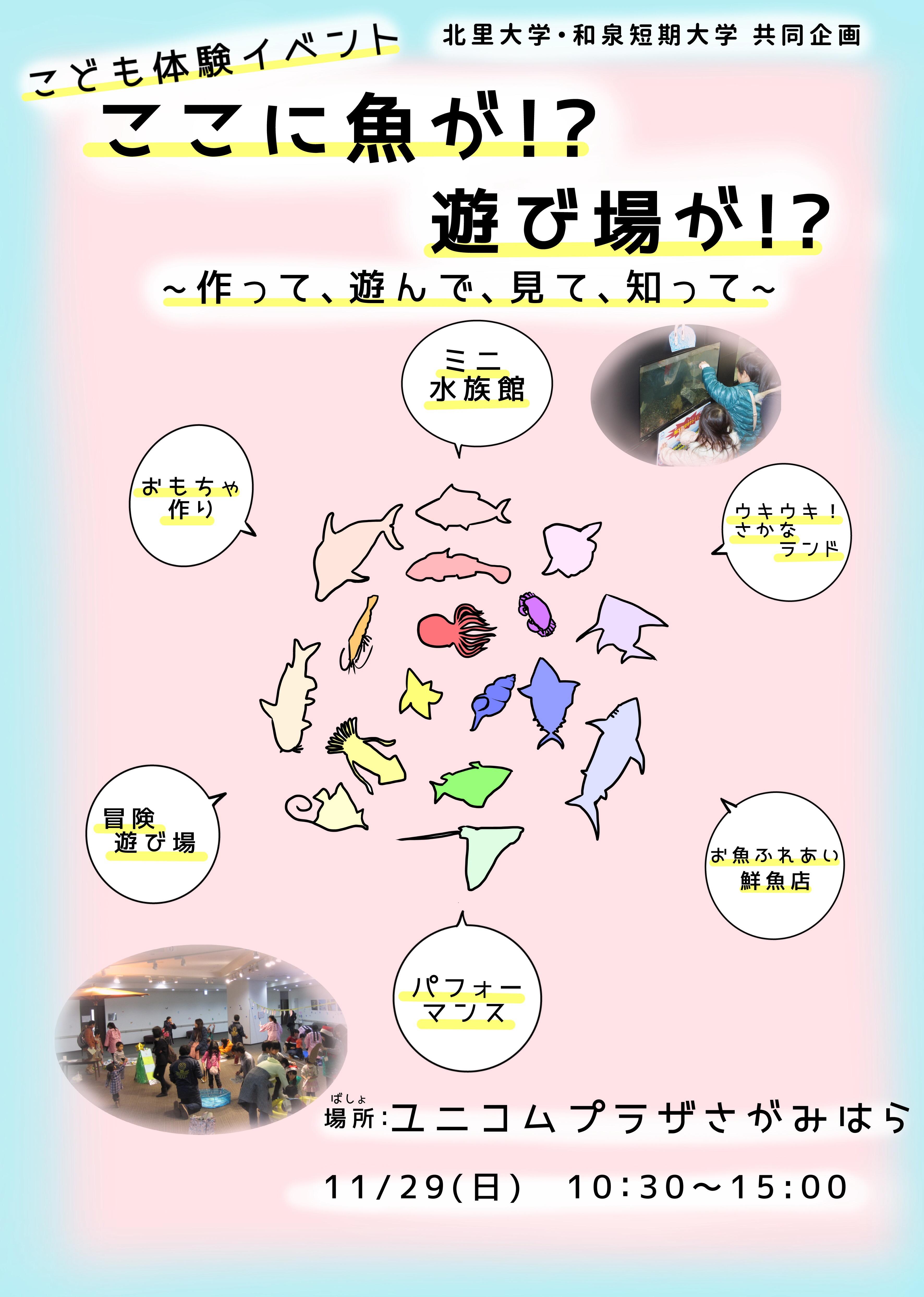 image3 (3)