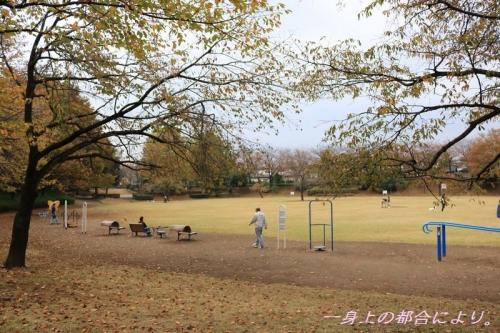 IMG_0366御伊勢塚公園1