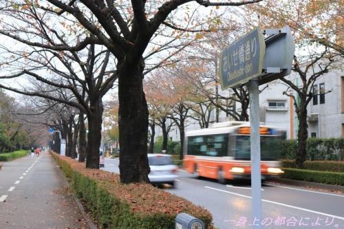 IMG_0417御伊勢塚公園5