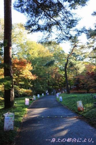 IMG_0480森林公園2-5