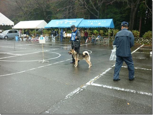 201511NKC三重支部チャンピオン展02-03