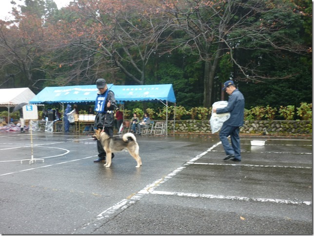 201511NKC三重支部チャンピオン展02-04