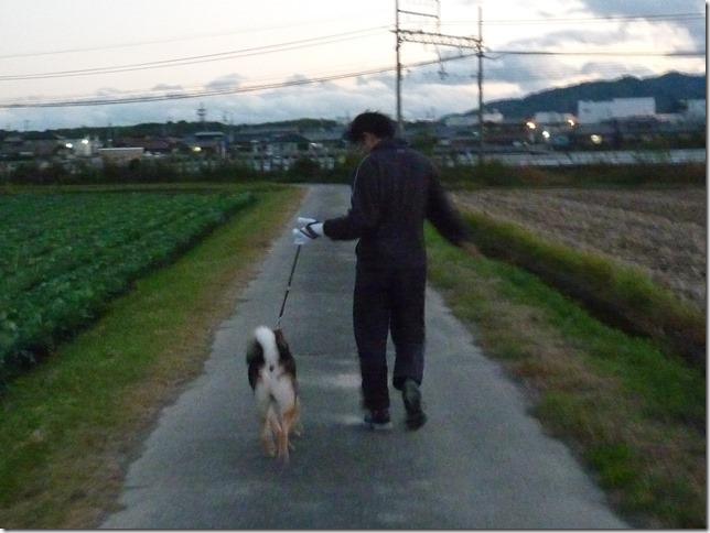 201511電車散歩-08