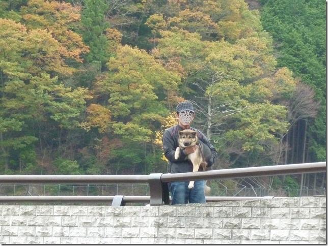 201511紅葉ドライブ滋賀編-10