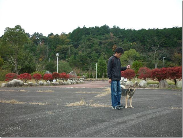 201511紅葉ドライブ三重編-16