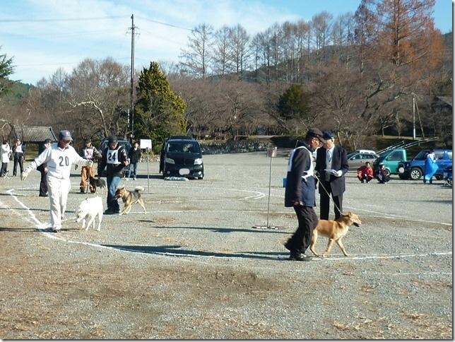 20151129協会関東連合展01-05