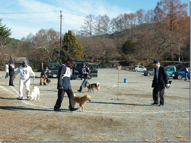 20151129協会関東連合展01-07