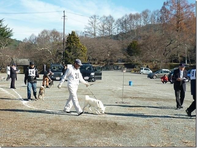 20151129協会関東連合展01-08