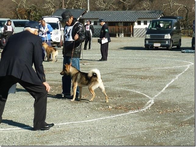 20151129協会関東連合展01-13