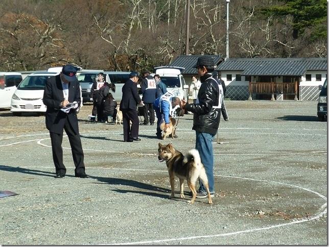 20151129協会関東連合展01-17