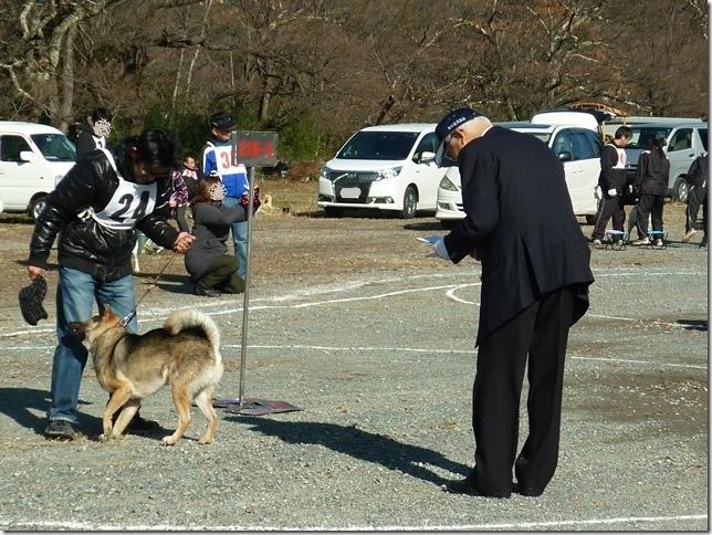 20151129協会関東連合展01-29