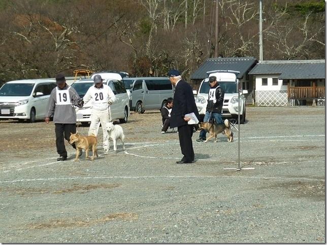20151129協会関東連合展03-10
