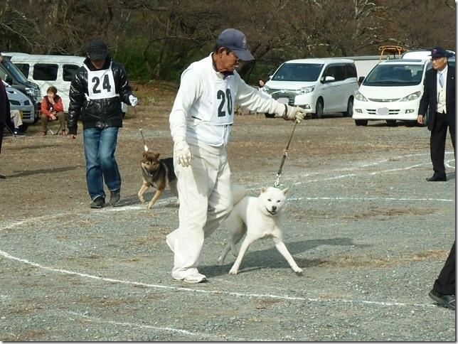 20151129協会関東連合展03-16
