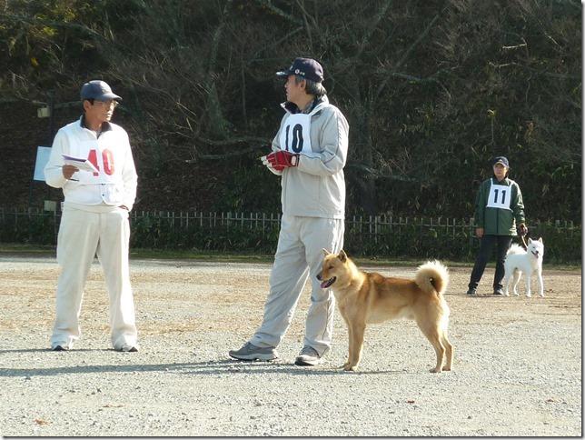 20151129協会関東連合展04-17