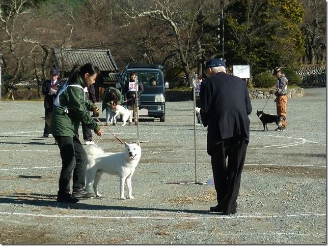 20151129協会関東連合展04-24