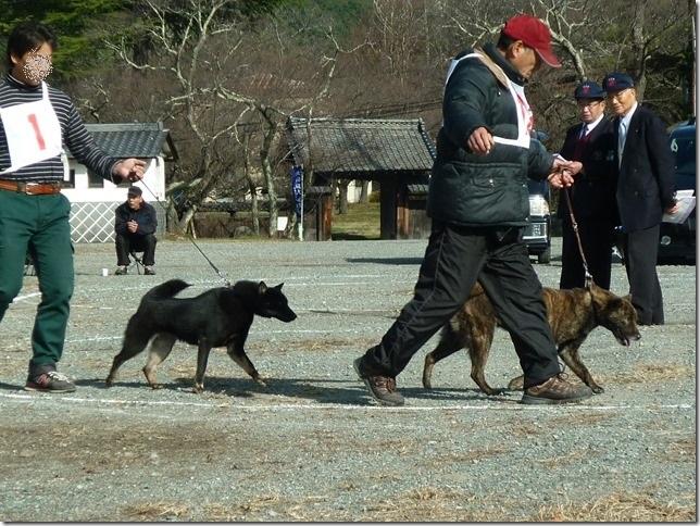 20151129協会関東連合展04-28