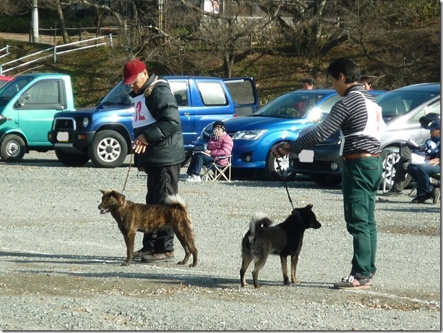 20151129協会関東連合展04-27