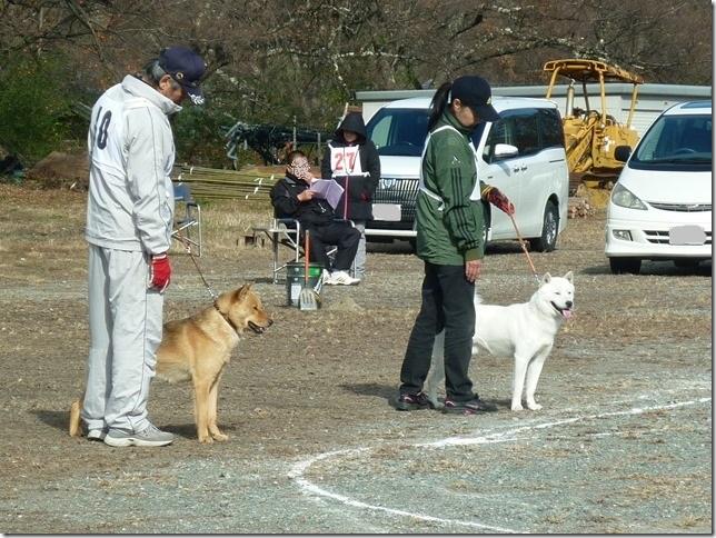 20151129協会関東連合展04-29