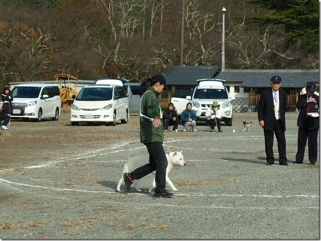 20151129協会関東連合展04-30