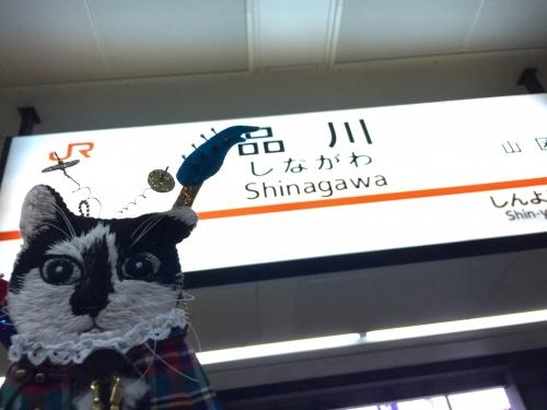 151121rocksinagawa