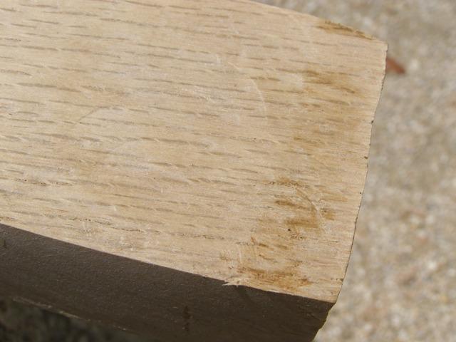 木殺し1103