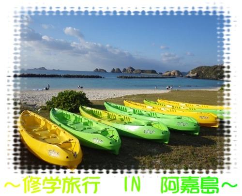 IN 阿嘉島①