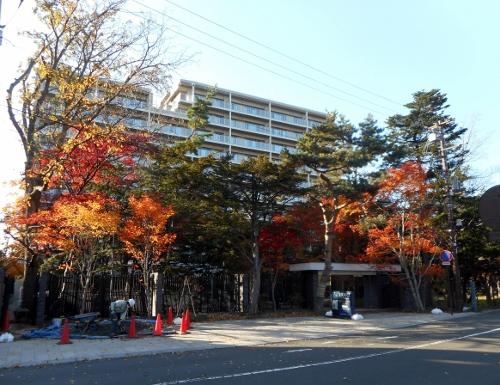 中根邸跡地のマンション 2015.10近影
