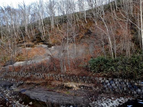滝野 厚別川上流 溶結凝灰岩 露頭