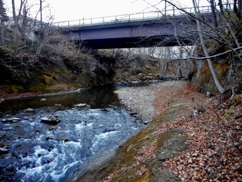 真駒内川 みずなら橋たもと 川岸