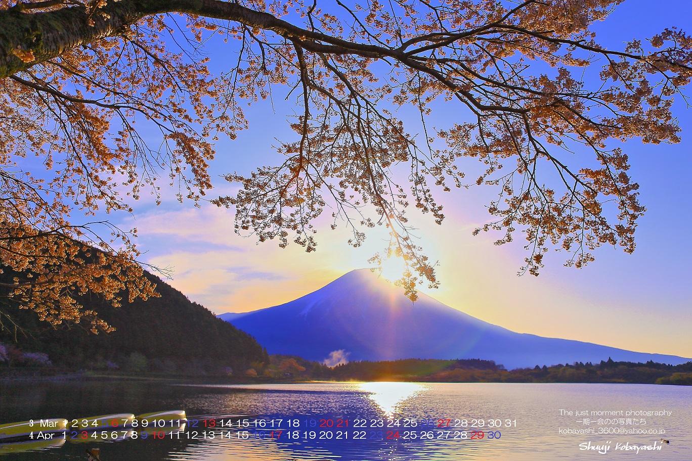 カレンダー カレンダー 2015 a3 : 桜とダイアモンドに近い感じ ...