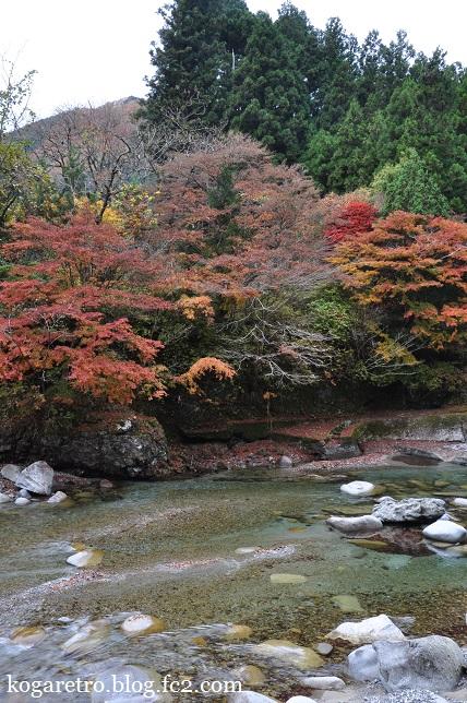 大芦渓谷の紅葉7