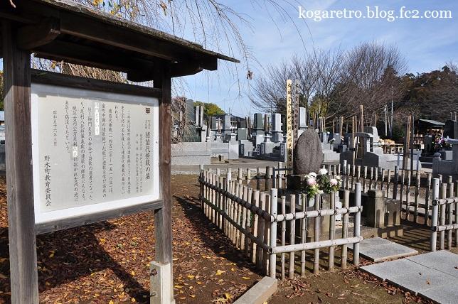 満福寺の冬桜5