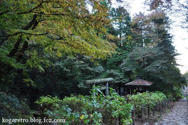 2015太平山の朝日と紅葉7