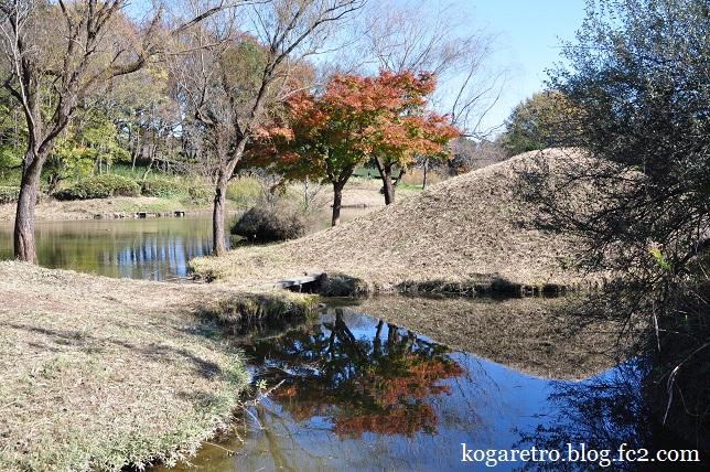 秋の古河総合公園6
