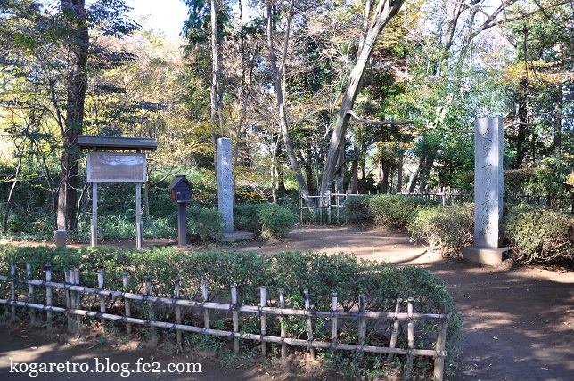 秋の古河総合公園4