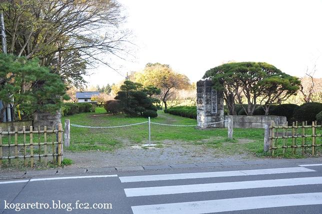 秋の古河総合公園10