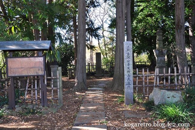 秋の古河総合公園9