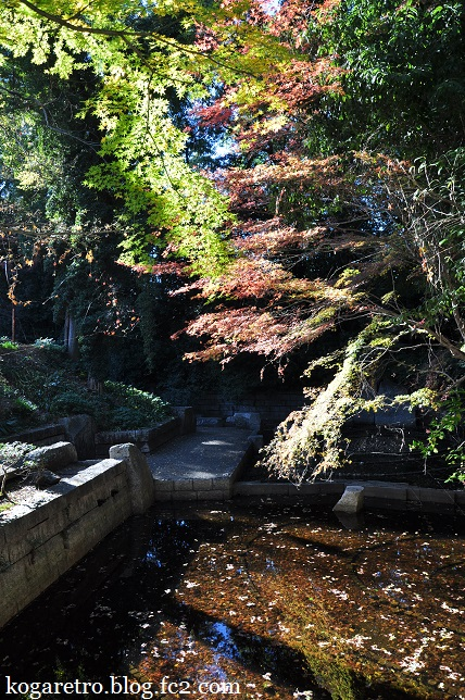 秋の鷹見泉石記念館5