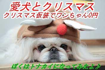 xms_2015111402052467c.jpg
