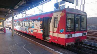 m-DSC_0221.jpg