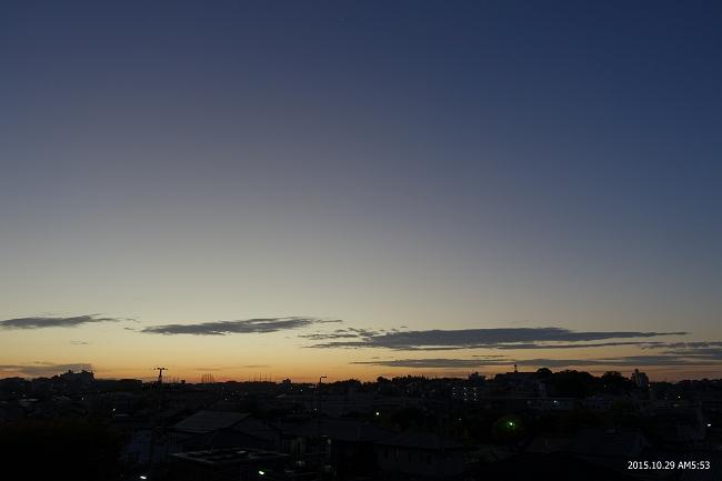 DSC01649-s.jpg