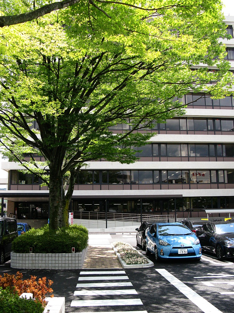 2014_08_07 豊田市役所西庁舎005