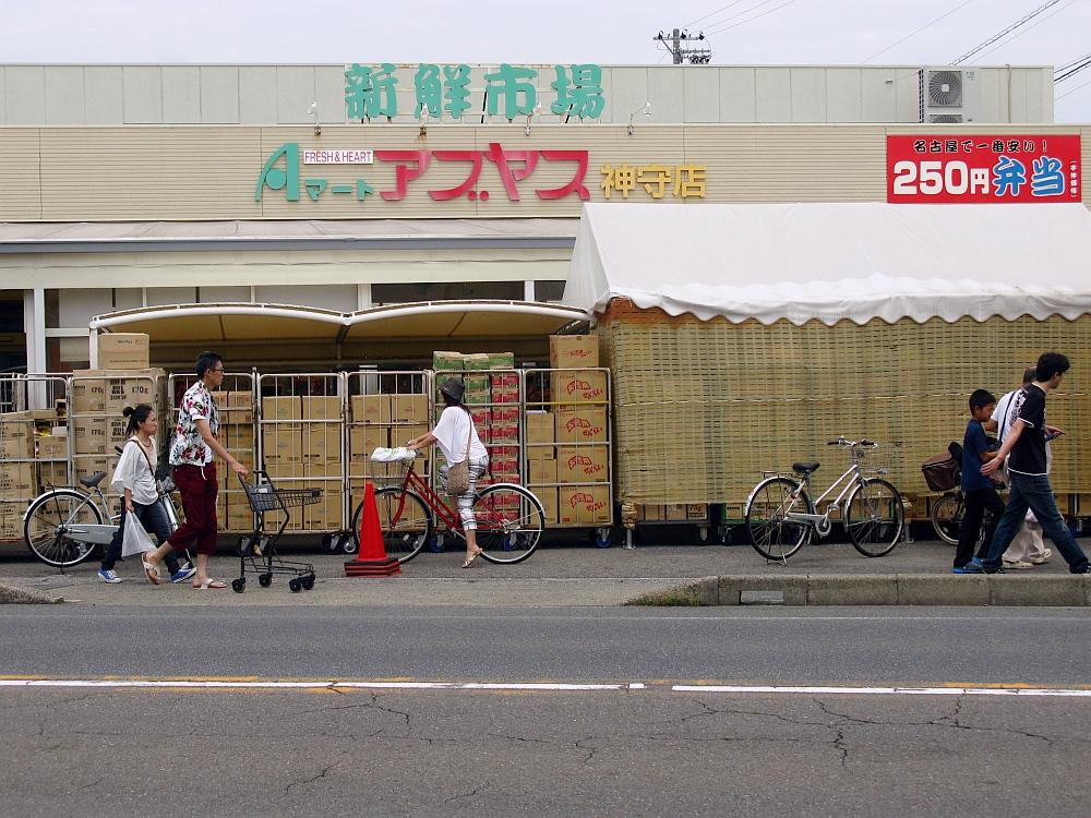 2014_08_13 神守:アブヤス007