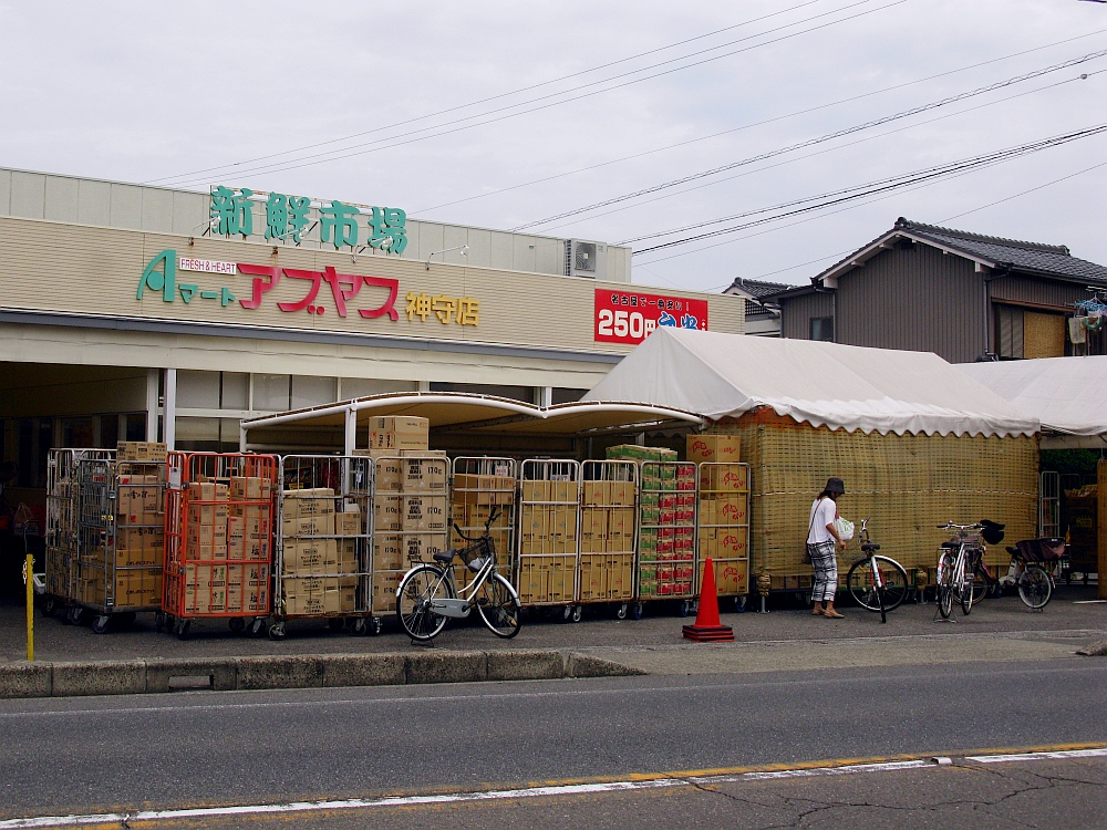 2014_08_13 神守:アブヤス006