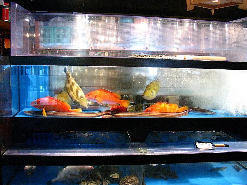 2014_10_27 広島:波平キッチン026