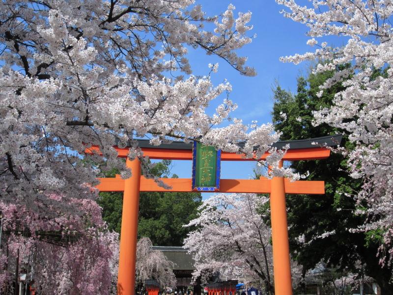 平野神社 (3)