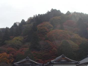 全山紅葉の香嵐渓