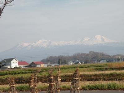 真っ白に雪化粧した大雪山系