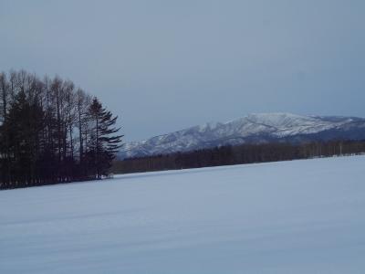 跡佐登から見た藻琴山